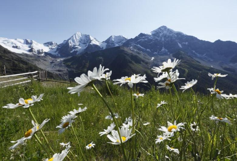 fb-vinschgau-nationalpark-sulden