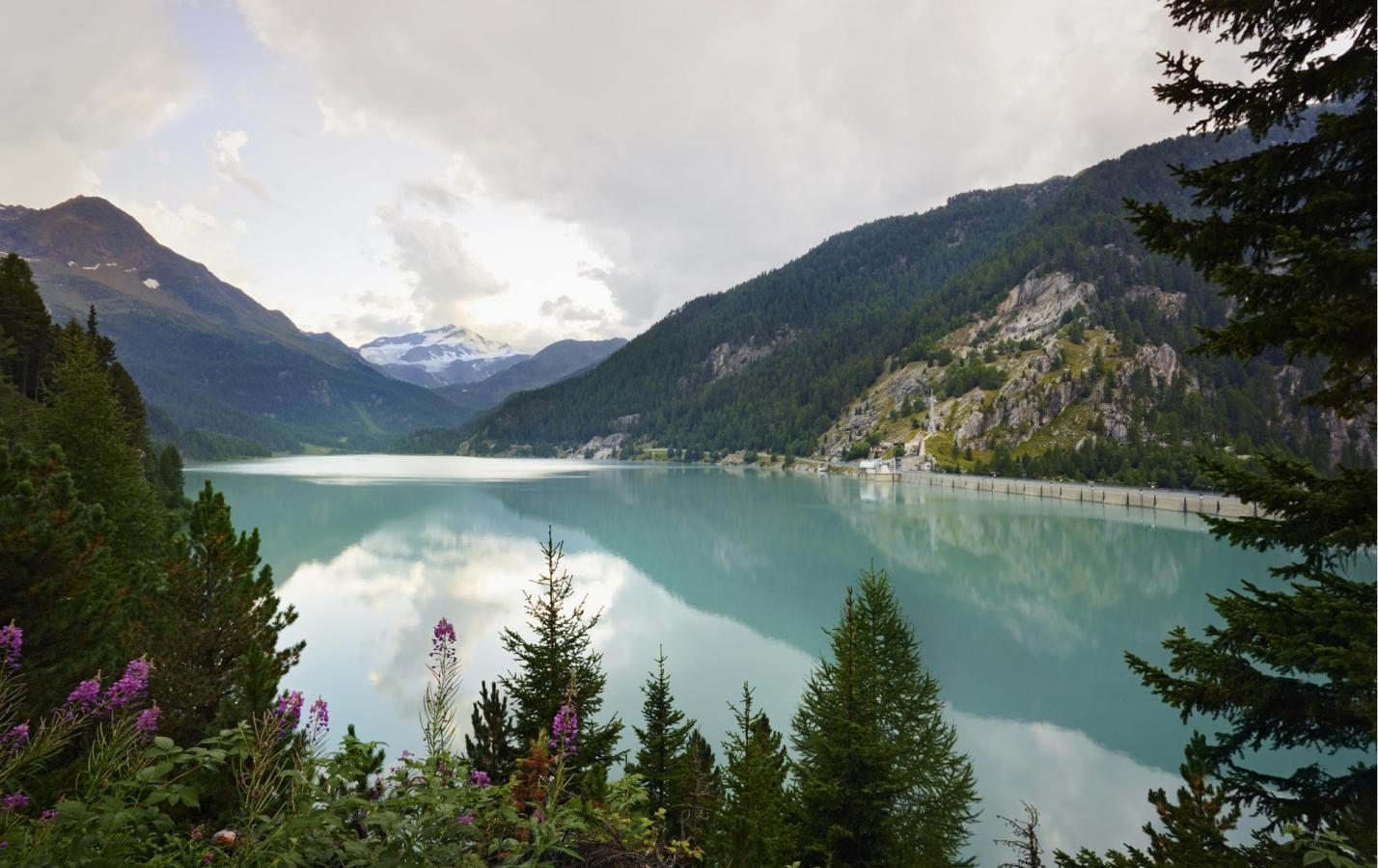 Homepage ufficiale per vacanze a Laces e nella Val Martello